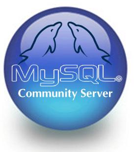 MySQL 6.0